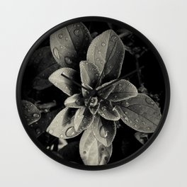 Rainy Leaves  Wall Clock