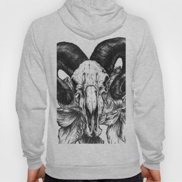 Pen and Ink Illustration - Ram Skull with Hibiscus Hoody
