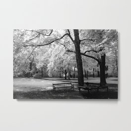 Park Bench I Metal Print