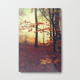 Autumn Colours Metal Print