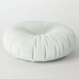 Light Pastel Green Gray Neutral Off-white Solid Color Parable to Valspar Ante Meridian 5005-1B Floor Pillow