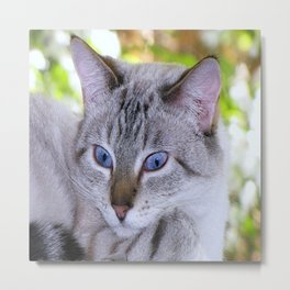 Ready for my close up Metal Print