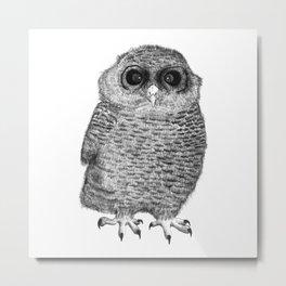 Owl Nr.3 Metal Print