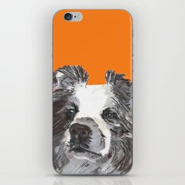 Border Collie printed from an original painting by Jiri Bures iPhone Skin