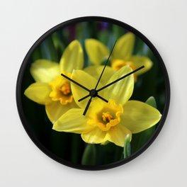 Daffodil Trio Wall Clock