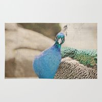 peacock Area & Throw Rugs featuring Peacock  by Pure Nature Photos
