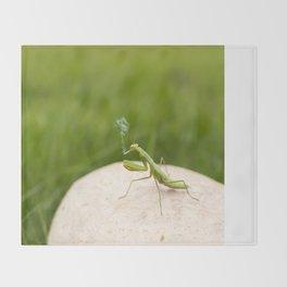 Smoking Praying Mantis Throw Blanket