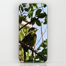 Bird I iPhone & iPod Skin