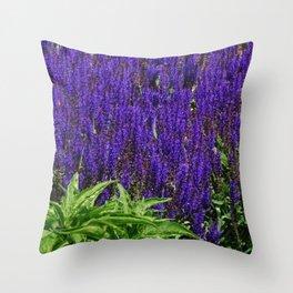 May Night Throw Pillow