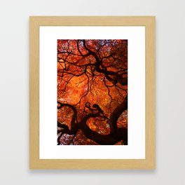 Eloquence - Autumn Maple Leaves Framed Art Print