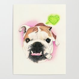 English Bulldog - F.I.P. - @LucyFarted Poster
