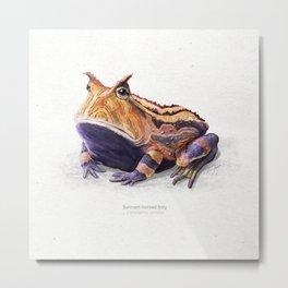 Surinam horned frog art print Metal Print