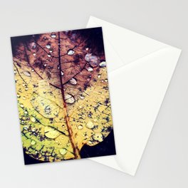 Colors of Rain Stationery Cards