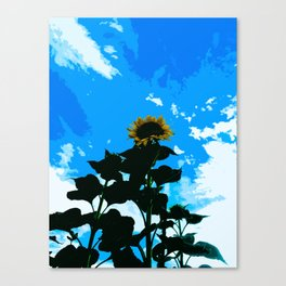 Look Up At A Sunflower Canvas Print