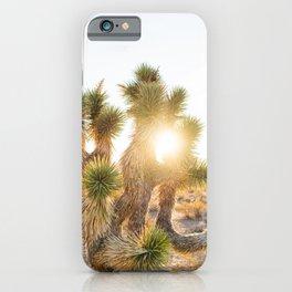 Joshua Tree Sunrise iPhone Case