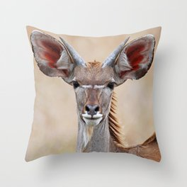 Young Kudu, Africa wildlife Throw Pillow