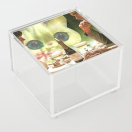 Third Wheel handcut collage Acrylic Box