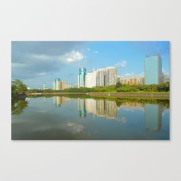 Shadows of buildings in water with plants Canvas Print