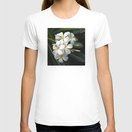 Wild Tropical Hawaiian Plumeria Flowers T-shirt