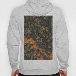 Autumn Passage Hoody