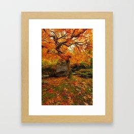 Autumn Ablaze Framed Art Print