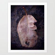 Torn Love Art Print