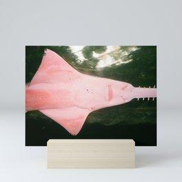 sawfish Mini Art Print