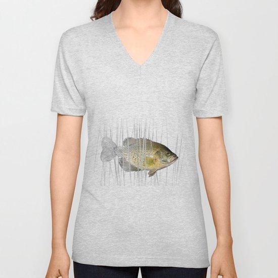 Black Crappie Fish by randynyhof