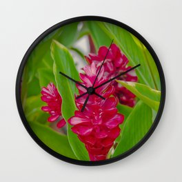 Alpinia purpurata Jungle King Red Ginger Tropical Flowers Lāhainā Maui Hawaii Wall Clock
