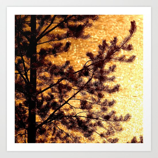 Pine Silhouette at Sunset Art Print