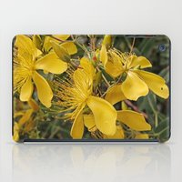 marc johns iPad Cases featuring Beautiful St Johns Wort by Wendy Townrow