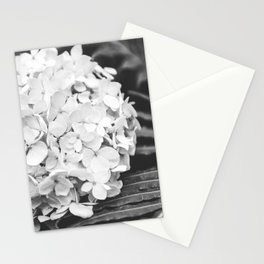Launceston Stationery Cards