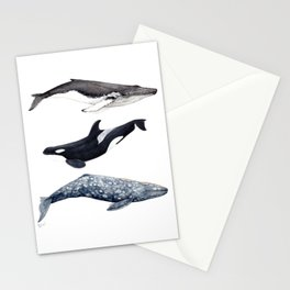 Orca, humpback and grey whales Stationery Cards