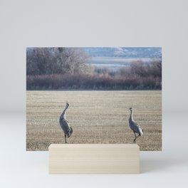 The Call of the Sandhill Cranes Mini Art Print