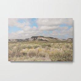 West Texas Mesa Metal Print
