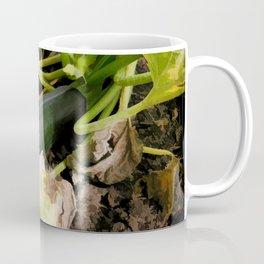 Zucchini in garden Coffee Mug