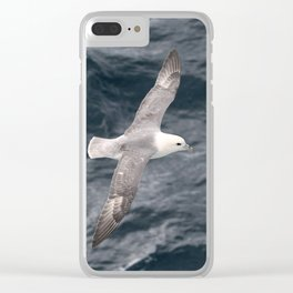 Seagull flying over Arctic Ocean Clear iPhone Case