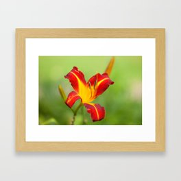 Opens With Life Framed Art Print