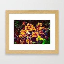 Thought Garden Framed Art Print