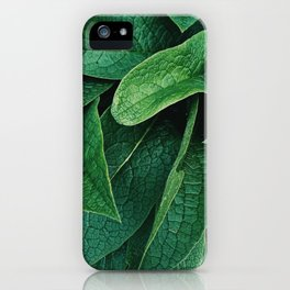 borage iPhone Case