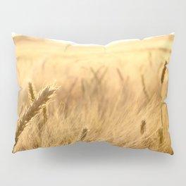 Golden wheat in the sunset Pillow Sham