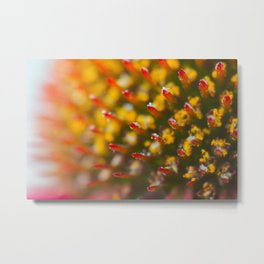 Pollen Geometry Metal Print