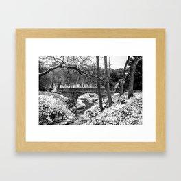 Dallas Winter Landscape Framed Art Print