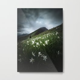 Mountain Golica and Narcissus flowers Metal Print