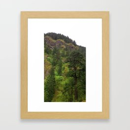 (#72) A Palette of Green Framed Art Print