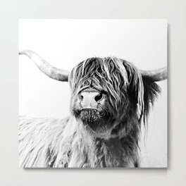 HIGHLAND CATTLE FRIDA Metal Print