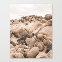 California Joshua Tree National Park Rock Formations Canvas Print
