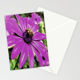 Honey Bee On A Spring Flower Stationery Cards