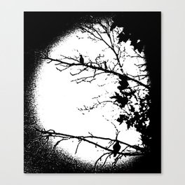 Hang Time Canvas Print