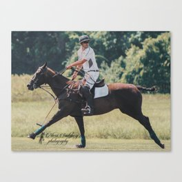 Bay Cantering Polo Pony Canvas Print